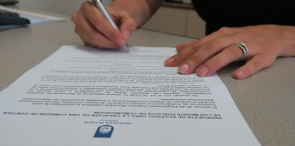 Noticia Calvia